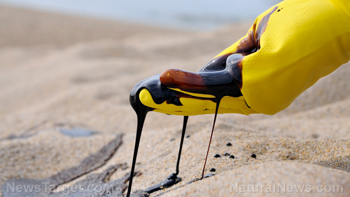 Petroleum Oil Toxicity Side Effects Diseases And