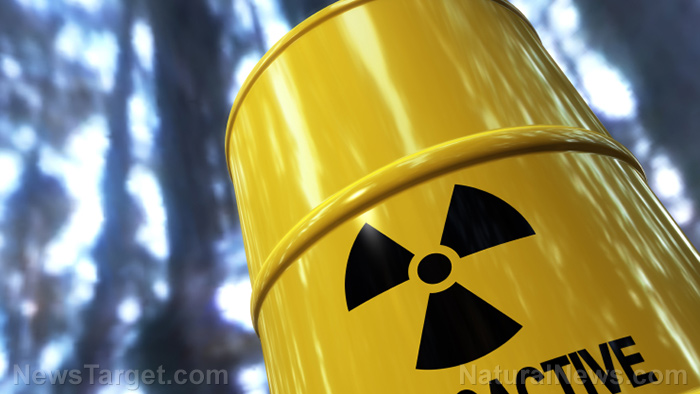 Plutonium Toxicity Side Effects Diseases And Environmental Impacts